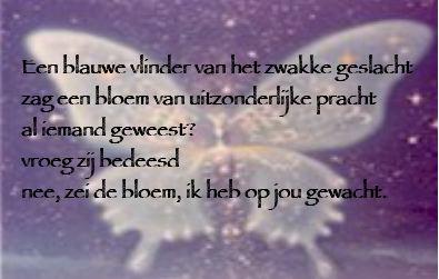 GedichtGerard.jpg